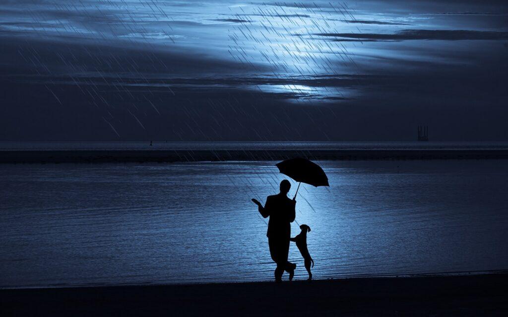 perro y hombre con paraguas